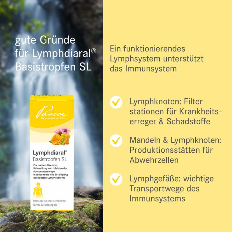 Gute Gründe für Lymphdiaral Basistropfen SL