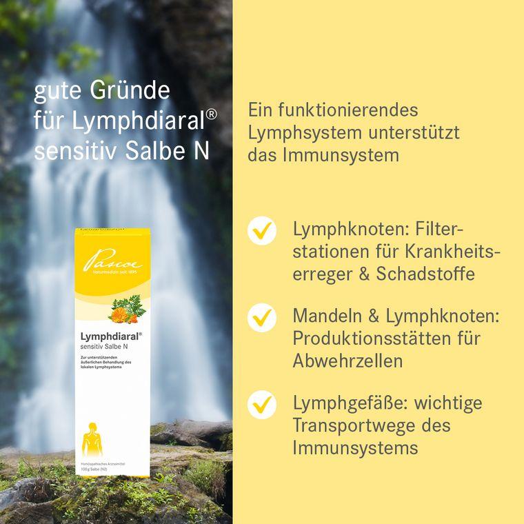 Gute Gründe für Lymphdiaral sensitiv Salbe N