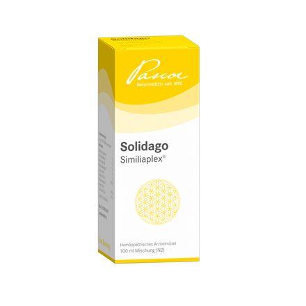 Solidago Similiaplex
