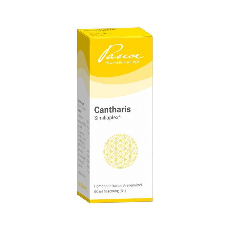 Cantharis Similiaplex