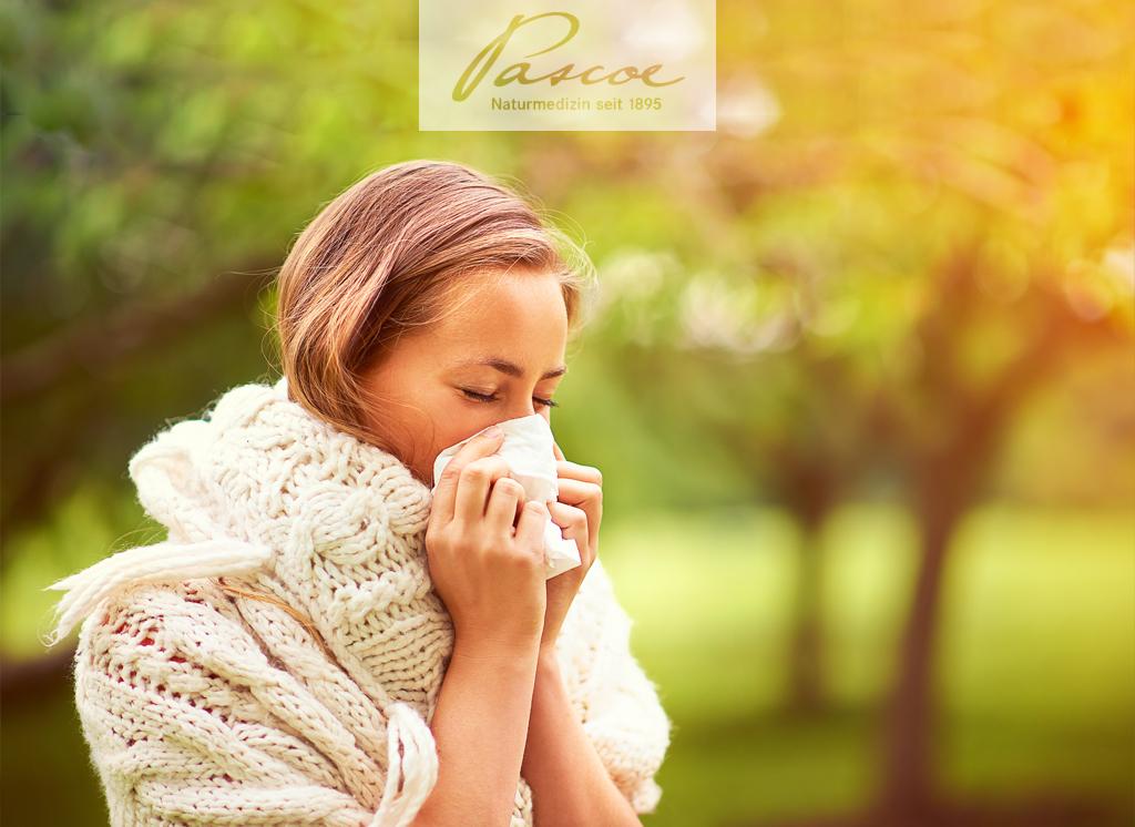 8 bedeutsamste Pollen in Deutschland