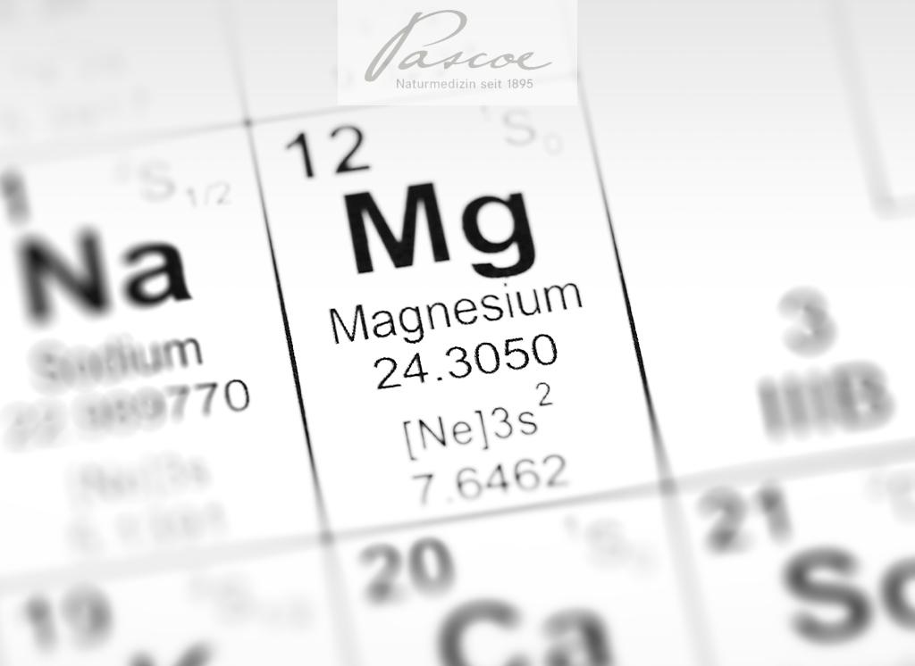 Mineralstoff des Lebens: Magnesium