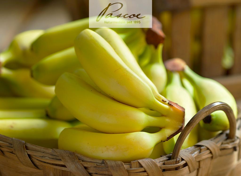 Stopfen Bananen wirklich?