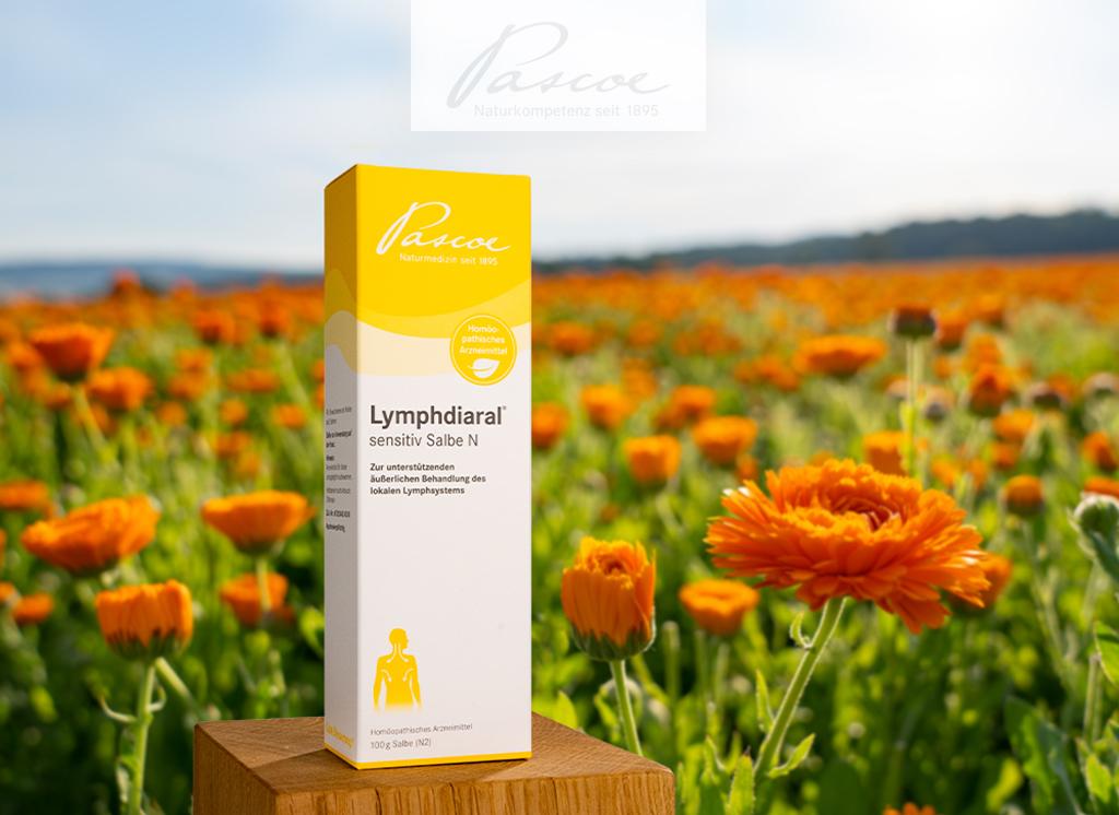 Die einzige in Deutschland zugelassene Lymphsalbe: Lymphdiaral® sensitiv Salbe N