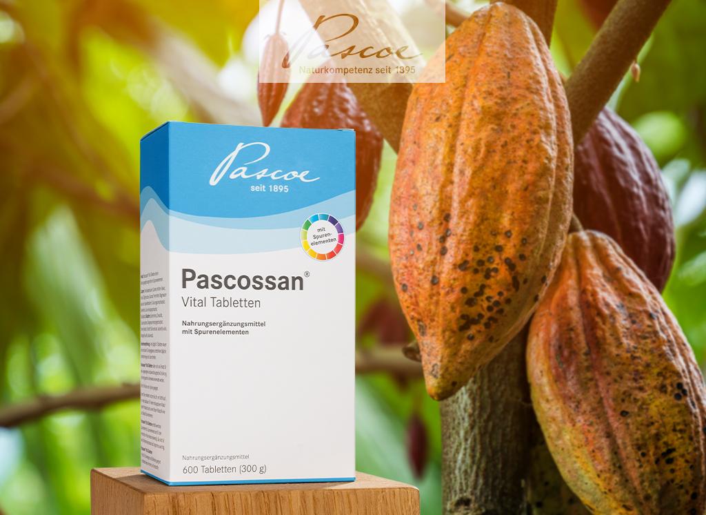 Packshot Pascossan Pulver